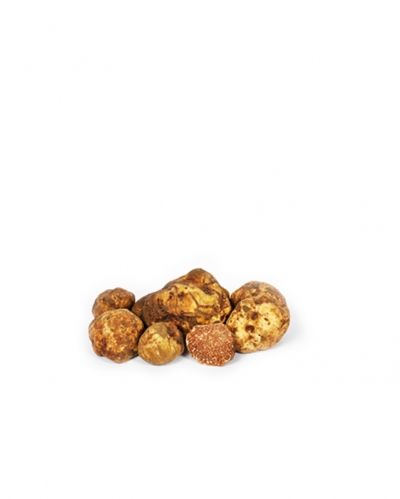 Cutted white truffle in olive oil 50g
